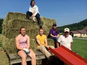 Bringing in hay